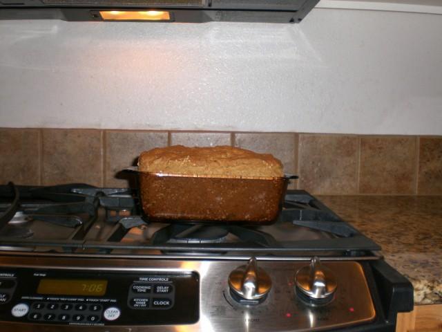 mmmm… gf bread
