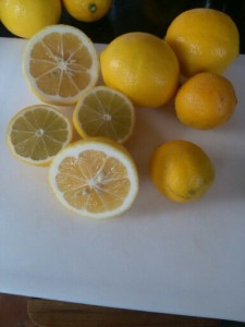 Meyer Lemony Goodness