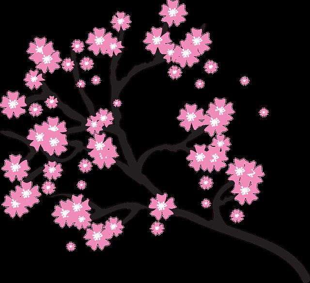 blossoms-2026207_640