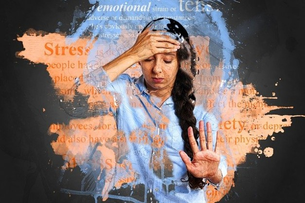 Stress response in the body
