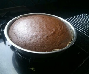 Biohacking & Mother's Day Quick and Easy Allergen-Free Chocolate Cake with Chocolate Mousse Frosting